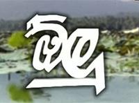 Olu (23) 06-05-2021